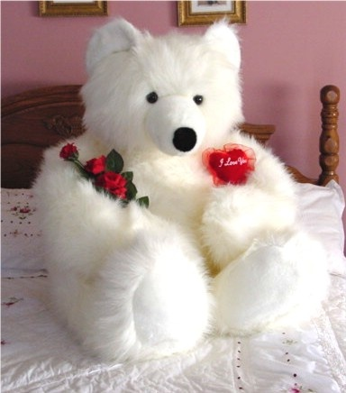 valentines day bears