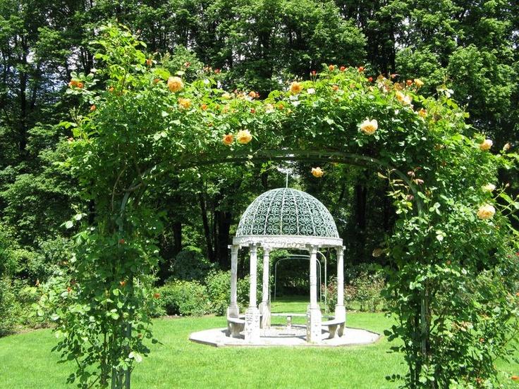 lush green garden..