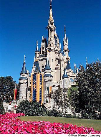 Disney World. A childhood favorite of mine and still is.