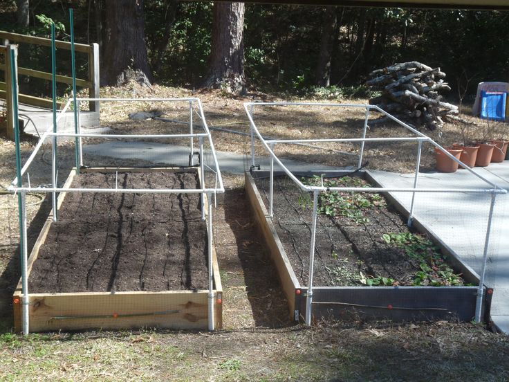 Raised Bed Irrigation Google Search Raised Bed Gardens Pinterest