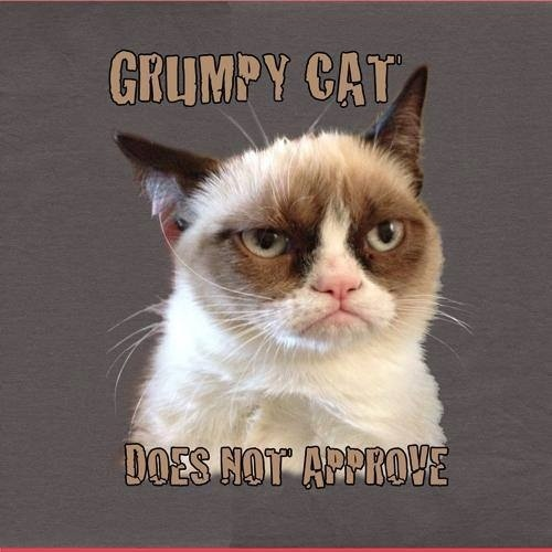 grumpy cat does not -#main