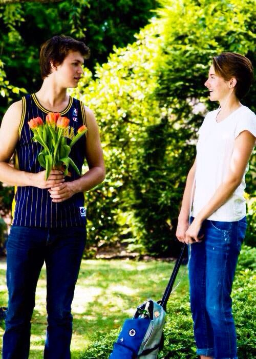 hazel grace lancaster and augustus waters relationship