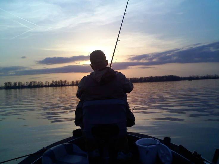 Reelfoot lake fishing related keywords reelfoot lake for Reelfoot lake fishing report