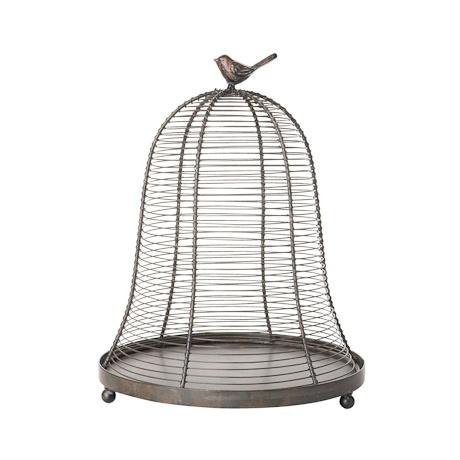 BirdsBird Freedom From Cage