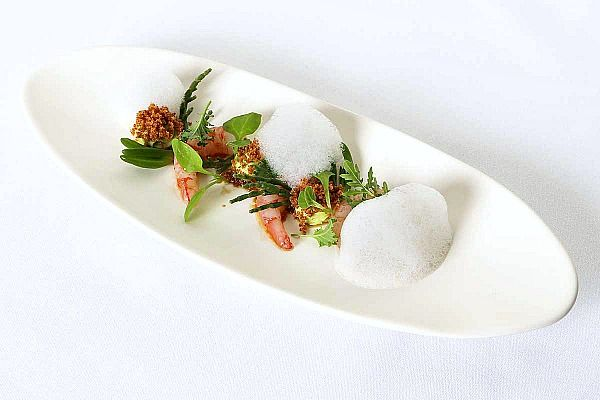 Urbane dish