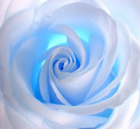 sky blue roshe  Via Shaheen Raza
