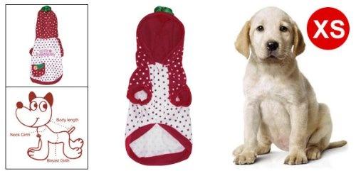 Como White Burgundy Strawberry Dog Pet Puppy    Pet Lovers Ads