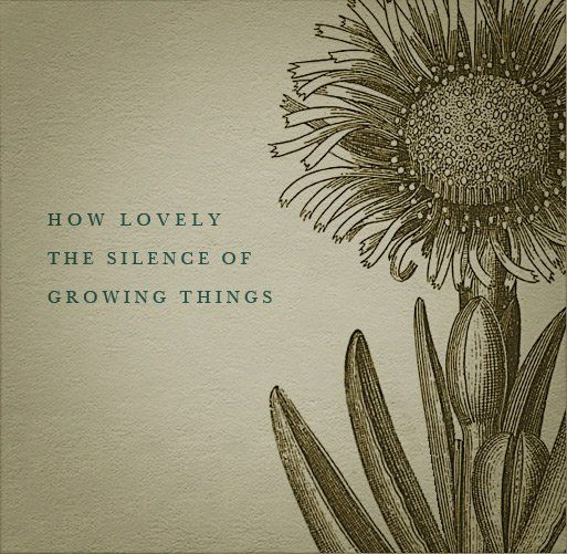 Quotes About Love Growing : HOw lovely the silence of growing things.