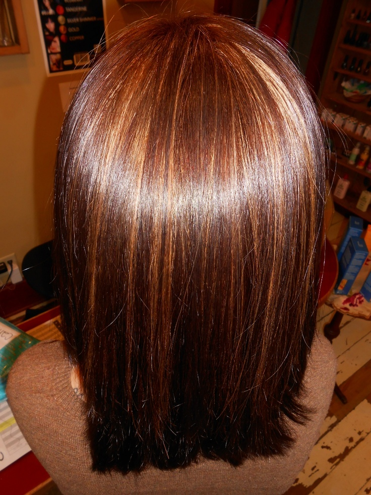 Pin Mocha Hair Color With Caramel Highlights On Pinterest