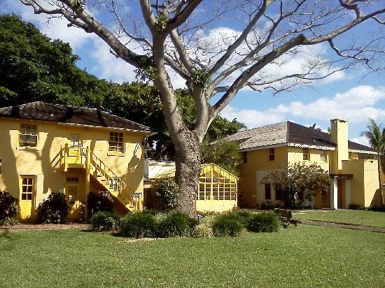 Bonnet House Fort Lauderdale Florida Fort Lauderdale Bonnet Ho