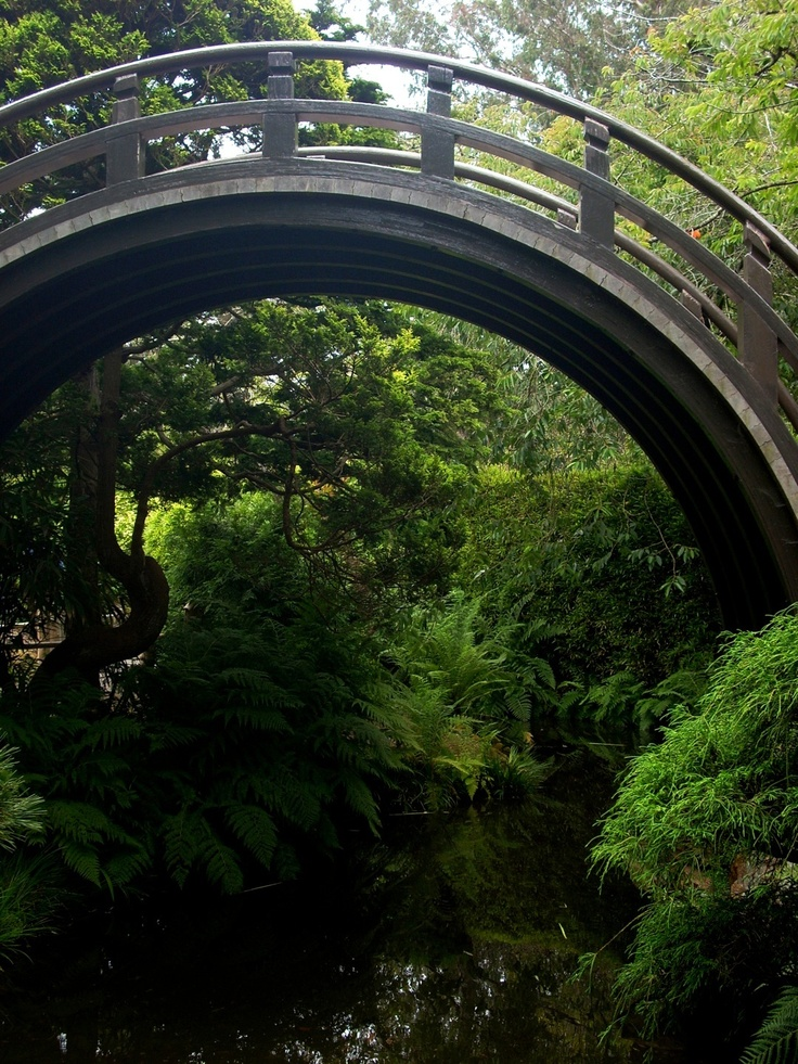 Japanese Tea Garden San Francisco Favorite Places