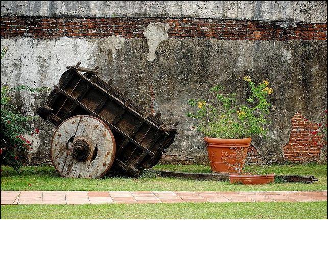 Jard n bot nico en caguas pr island of enchantment for Actividades en el jardin botanico de caguas