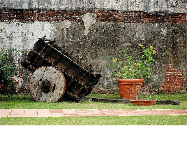 Jard n bot nico en caguas pr island of enchantment for Bodas jardin botanico caguas