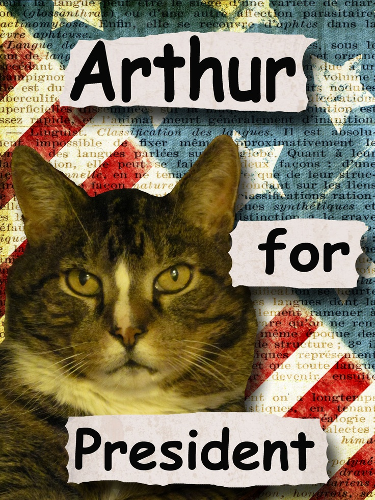 "Arthur McEvoy the spokescat for Arthur's Pet Pantry is running for President to draw attention to our pet food charity. We provide pet food to needy pets and their families that are have fallen on hard times. We are located in Mifflinburg PA and help feed pets in the Central Susquehanna Valley. Visit Arthur at ""Arthur's Pet Pantry""on facebook."