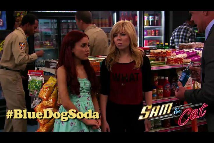 Sam And Cat Blue Dog Soada