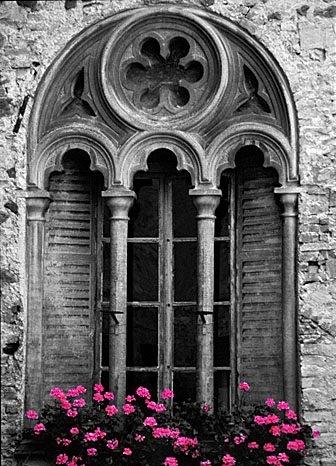 Gothic Window Doorways Windows And Gates Pinterest