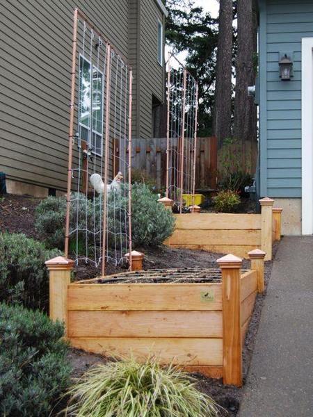 raised bed slope garden Pinterest