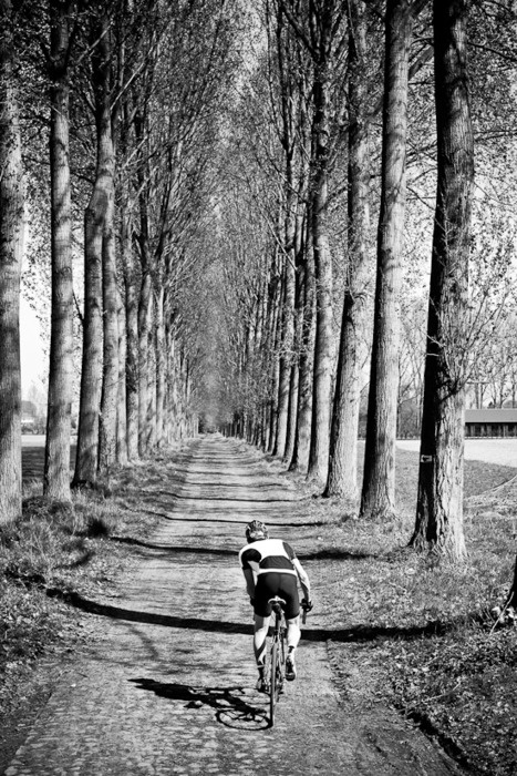 VeloDramatic - Paris Roubaix 2011