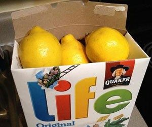 white elephant gift: when life gives you lemons... make lemonade. Include lemonade recipe with all the ingredients!!!