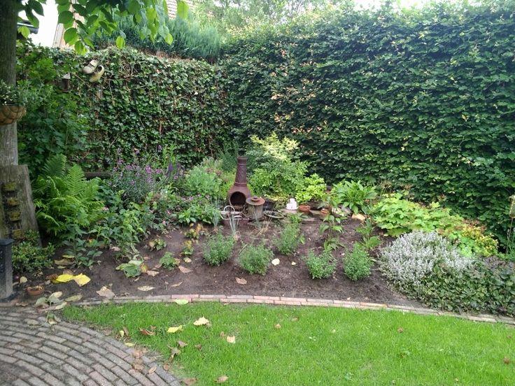 Een verhoogde border : Nieuwe tuin ideeen : Pinterest
