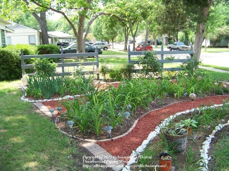 Zone 8 (Texas) garden tour. Lots of DIY inspiration!
