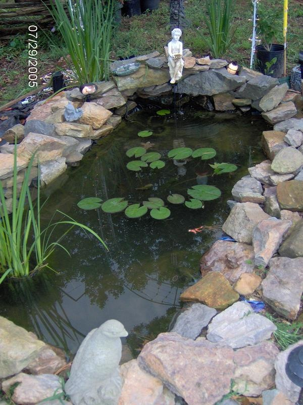 Pin by jeanne hackney on outdoor water garden ideas for Front yard fish pond
