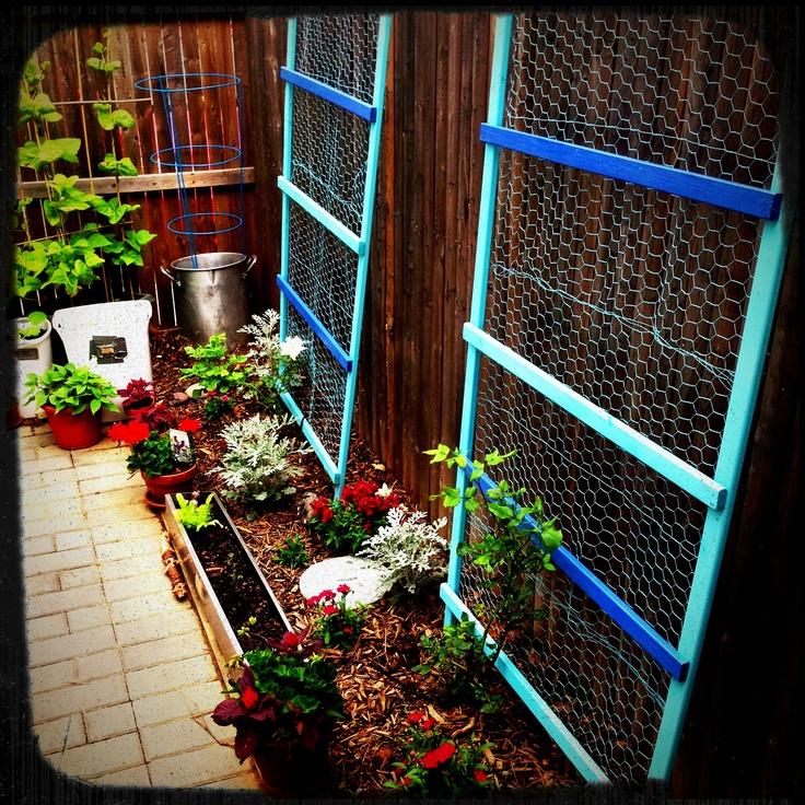 Pin By Kristi Lamoreux On Yard Garden Goodness Pinterest 640 x 480