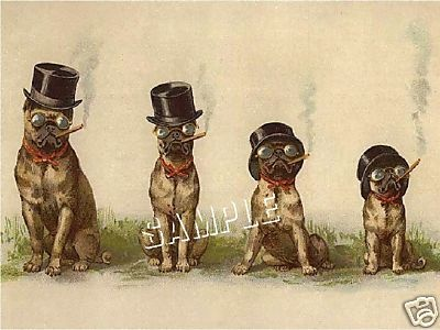 """""""Victorian Pugs Smoking Cigars"""". Antique Trade Card art. This is a reproduction of a whimsical Victorian era trade card featuring four vintage Pugs with attitude!  They have matching top hats, glasses and bow ties, and each is smoking a cigar. Definitely different!"""