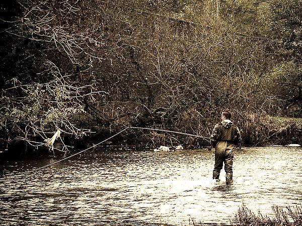 Michigan fly fishing my style pinterest for Fish in michigan