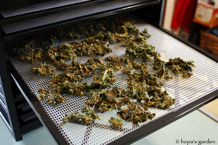 Vegan-Cheddar Kale Chips | Veggie cooking | Pinterest