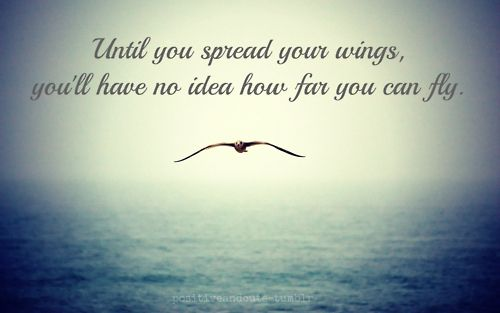 Spread your wings you can go far so far courageous warrior
