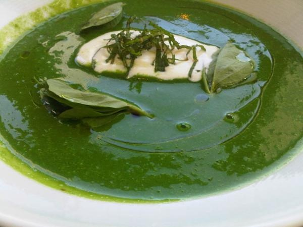 English Pea Soup with lemon cream, pea tendrils and mint . Photo ...