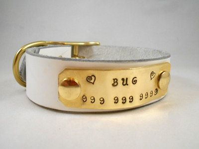 Custom Personalized Leather Dog Collar The Name Plate Collar