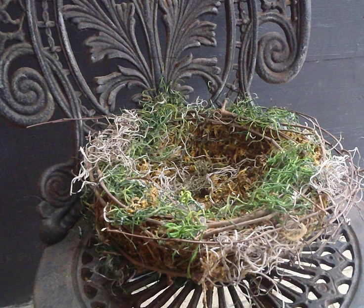 Pin by lori smoot on bird nest decor pinterest for The nest home decor