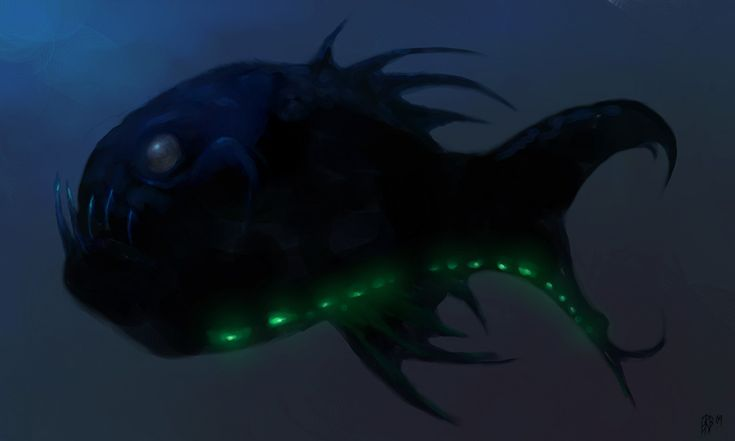 Deep sea fish ocean animals pinterest for Deep sea fishes