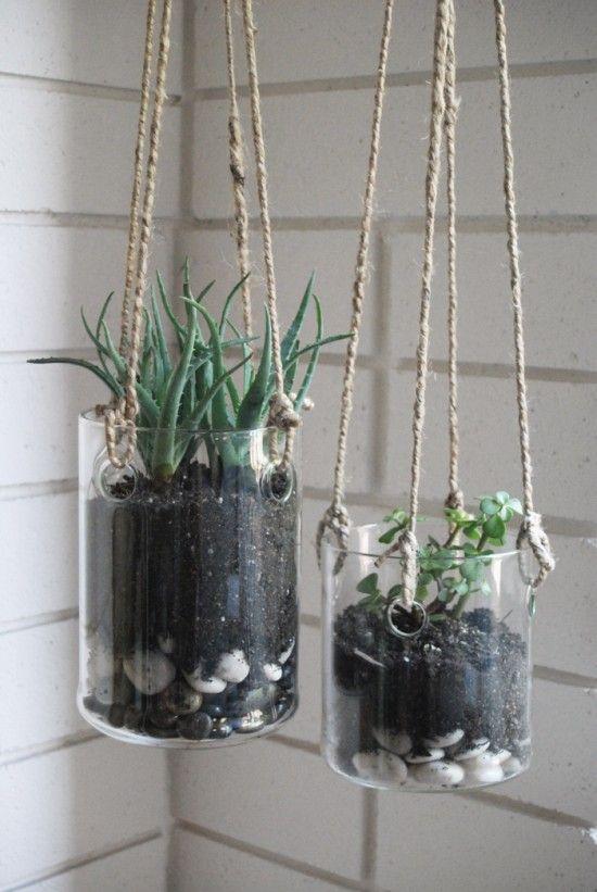 Hanging glass planters  Terrarium  Pinterest