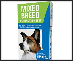 Dog Breed Test Kit
