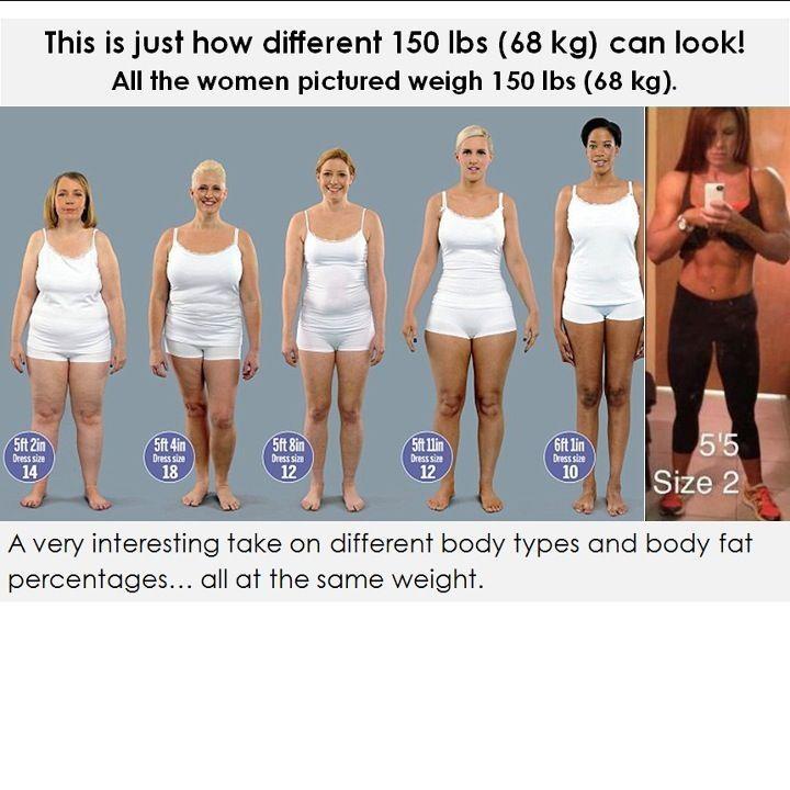 average body fat for women № 79547