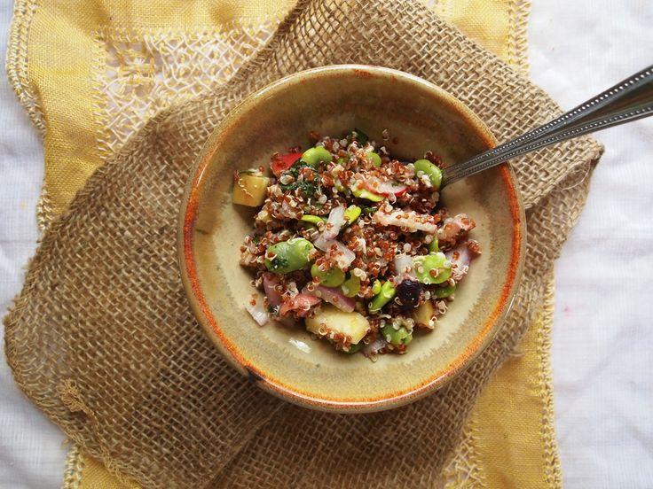 Spring fava bean, quinoa, radish, avocado salad