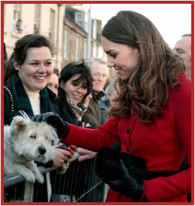 Η Kate αγαπά τα Westies Terriers...