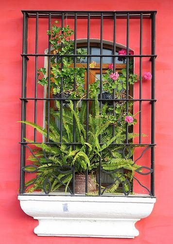 Spanish colonial window - Antigua, Guatemala