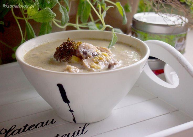 Chicken, Leek and Mushroom Soup (Broccoli, Celery, Apple, Apple Cider ...