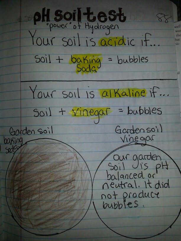 Ph soil test travis 4th grade science journal pinterest for Soil 4th grade science