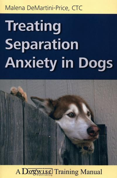 How to treat extreme separation anxiety in dogs