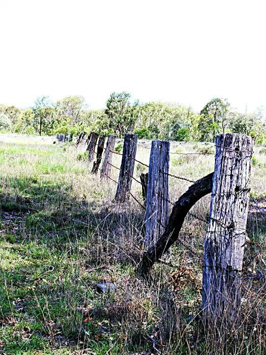 Old barbed wire fence things i like pinterest