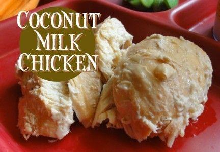 coconut milk chicken | Grain-free Savory Selections | Pinterest