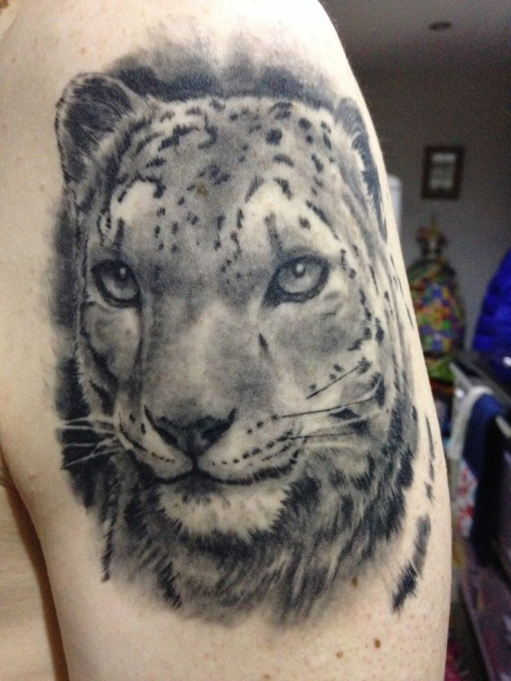 tribal snow leopard pictures to pin on