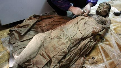 700 year old mummy found in china ancient history pinterest