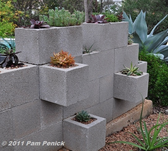 Cinder Block Wall With Succulents Outdoor Ideas Pinterest
