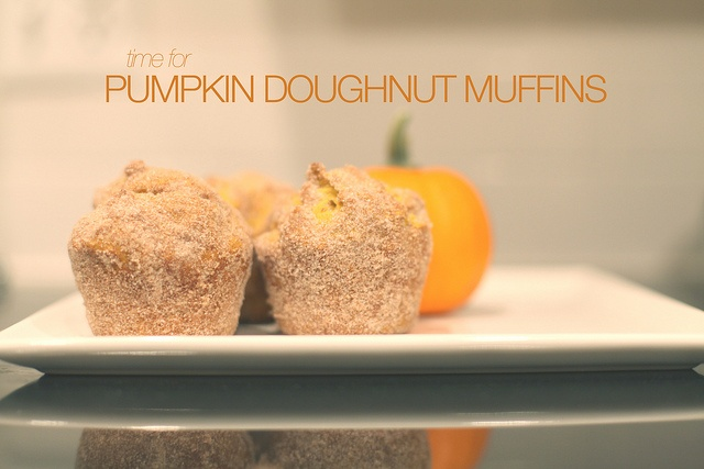 Pumpkin Doughnut Muffins | Recipes and Food...Yum-o | Pinterest